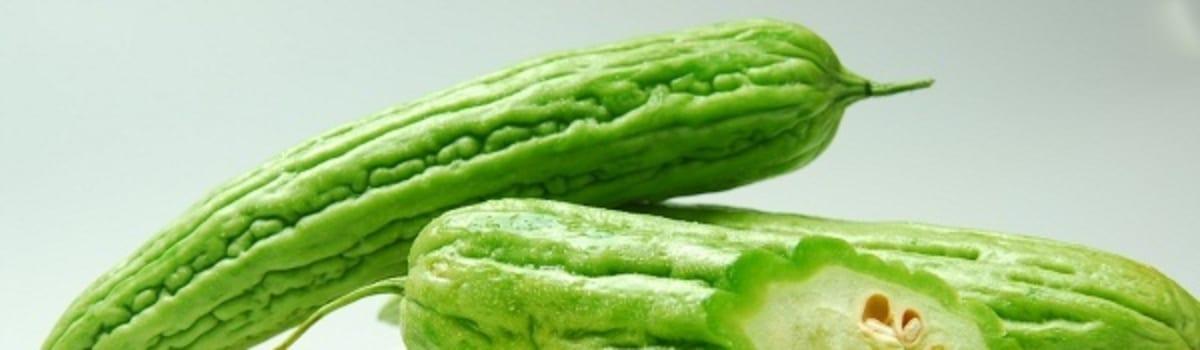 Khổ qua – Món ăn bài thuốc chữa bệnh đái tháo đường